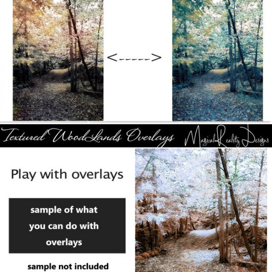 Textured Woodlands Overlays Set 2 - Click Image to Close