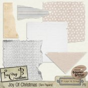 Joy Of Christmas Torn Papers