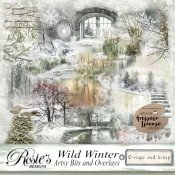 Wild Winter Artsy Bits and Overlays