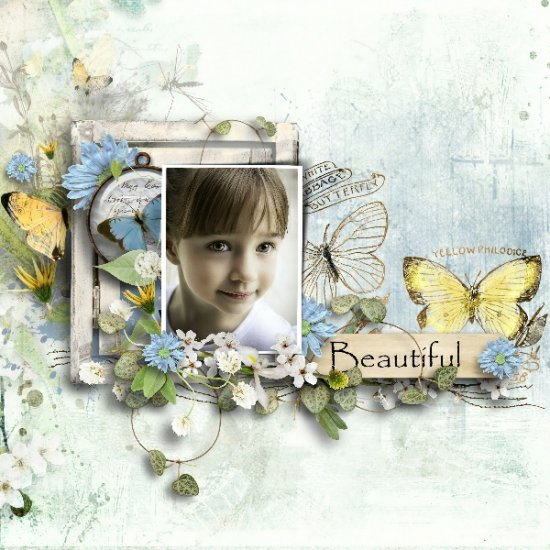 G & T DESIGNS THE BUTTERFLY JOURNALS KIT - Click Image to Close