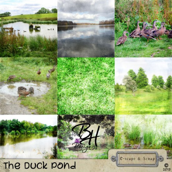 The Duck Pond - Page Kit - Click Image to Close