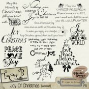 Joy Of Christmas Wordart