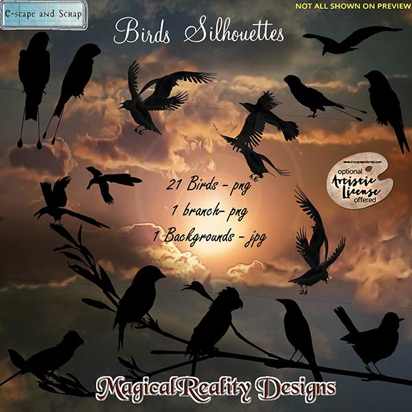 Birds Silhouettes By MagicalReality Designs