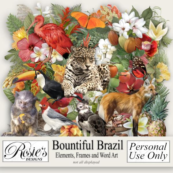 Bountiful Brazil Elements