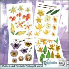 Daffodils A4 Printable Collage Sheets